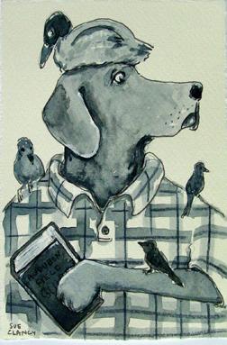 BirdDog72
